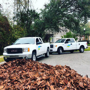 Commercial and Residential Landscaping Tampa FL